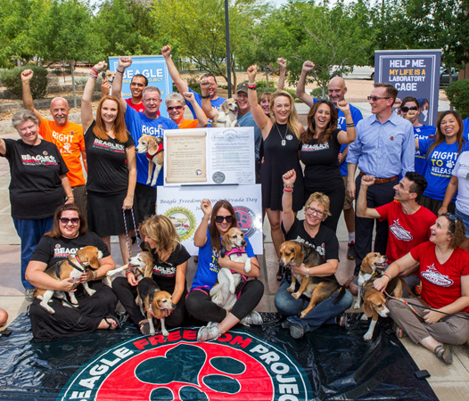 Advocating and celebrating success in Nevada for the Beagle Freedom Bill, a legislative push to enact laws that would ensure research facilities can give dogs and cats used in laboratory testing a chance at a life after research.