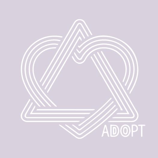 www.bonfire.com/adopting-silas
